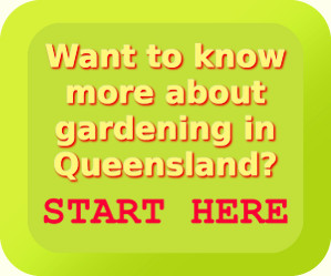Want to know more about gardening in Queensland?